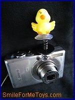 birdie on camera